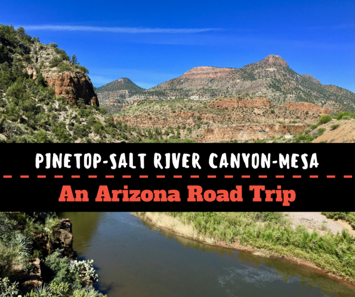 Pinetop to Salt River Canyon to Mesa: An Arizona Road Trip