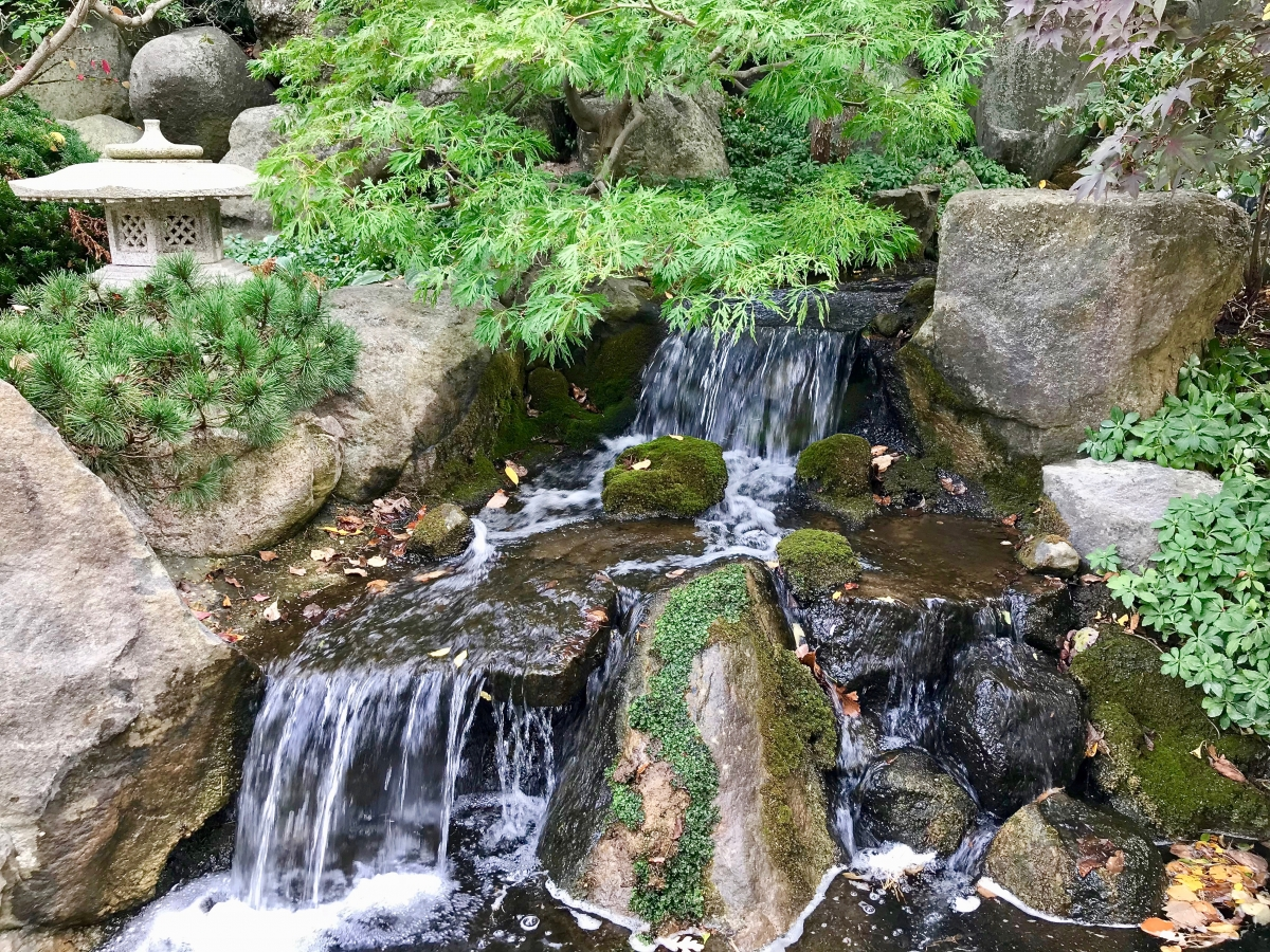 IMG 7839 - Fun Things to Do in Rockford, Illinois USA