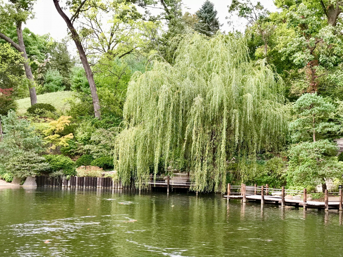 IMG 7869 - Fun Things to Do in Rockford, Illinois USA