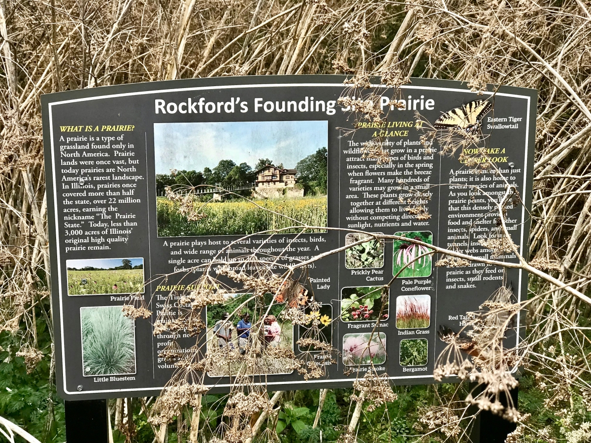 IMG 8053 - Fun Things to Do in Rockford, Illinois USA