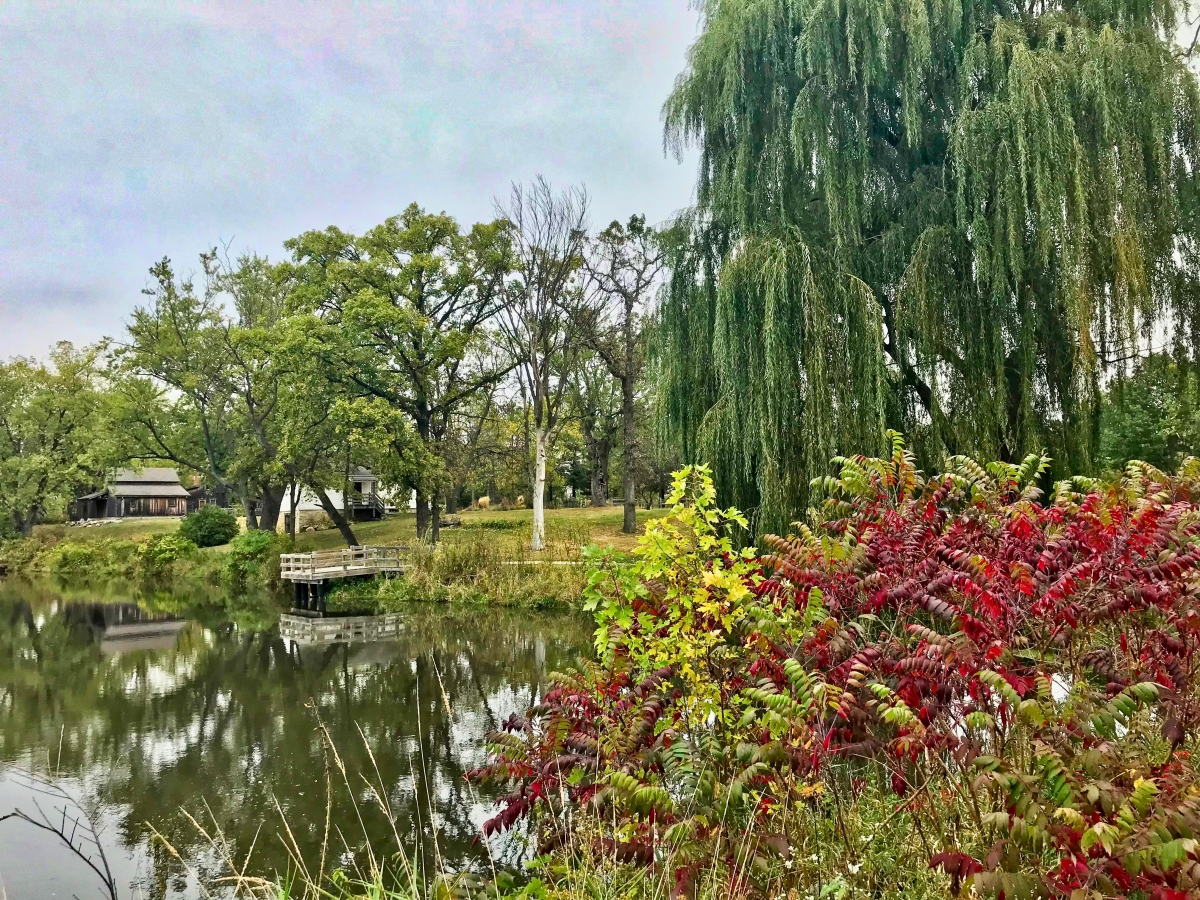IMG 8347 - Experience the Eclectic City of Beloit, Wisconsin
