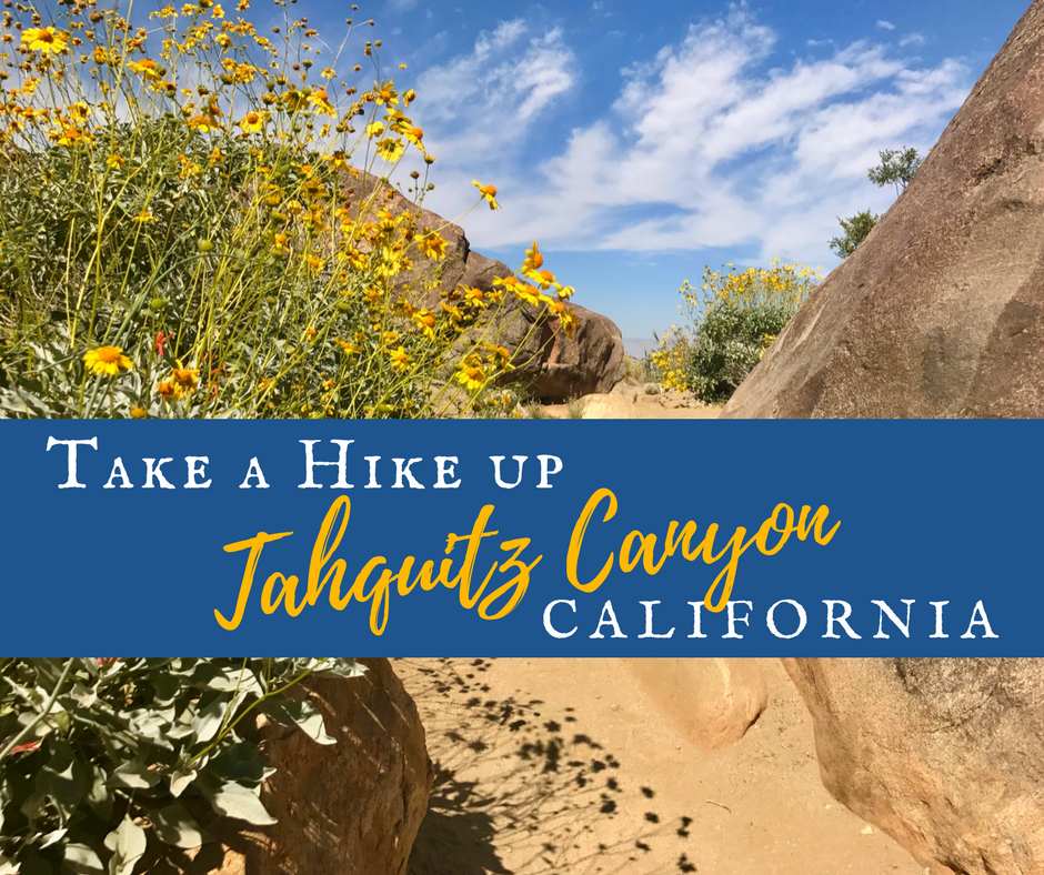 Take a Hike Up Southern California's Tahquitz Canyon!