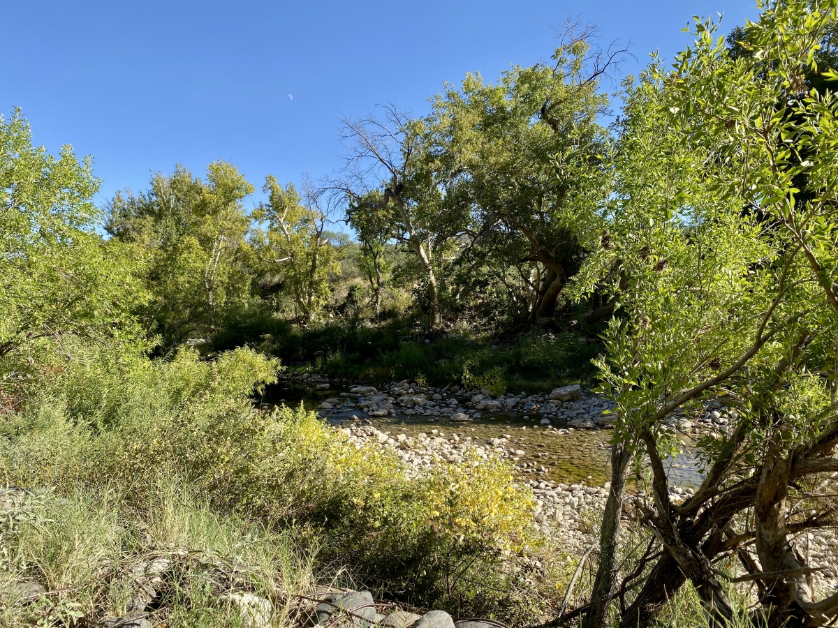 Beaver Creek at Montezuma Castle - Things to Do on a Drive from Phoenix to Flagstaff, Arizona