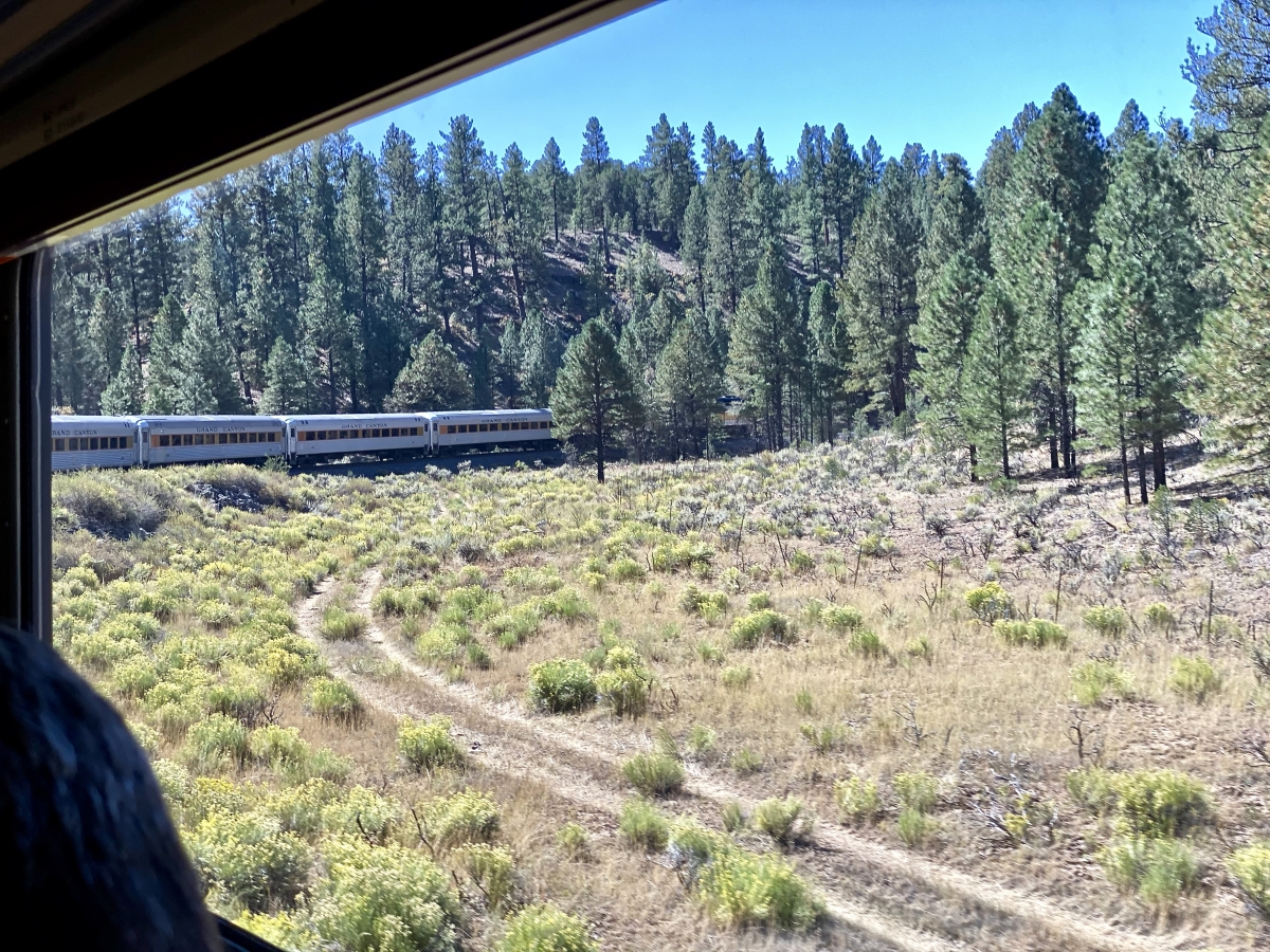 Grand Canyon Railway train curve - Take the Train to Grand Canyon National Park: An Insider's Guide